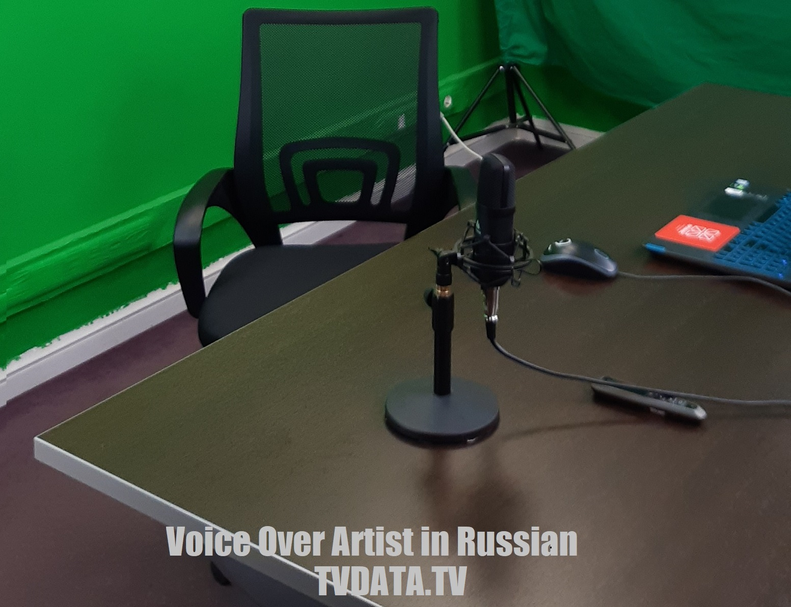 Russian voice over artist
